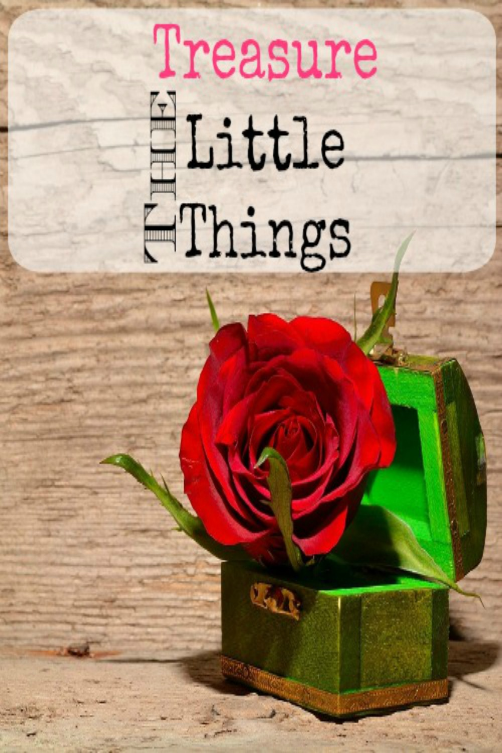 Treasure the little things. Great inspirational post about treasuring the little things.